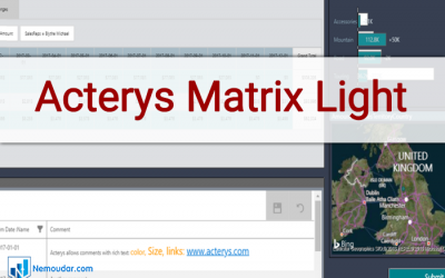Acterys Matrix Light | Power BI Custom visual